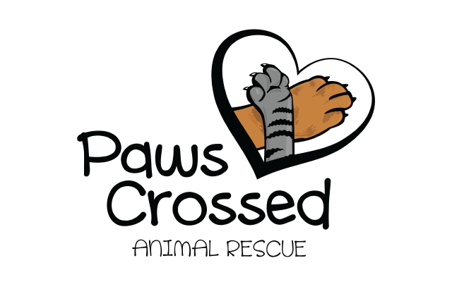 Paw Crossed
