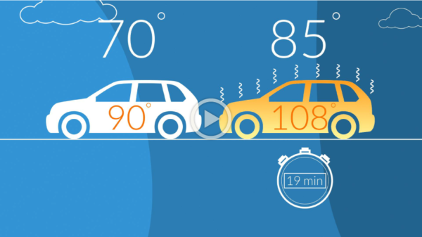 Summer Heat Risks