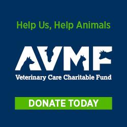 avmf-charity