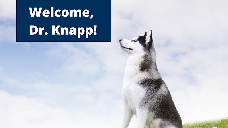 Welcome Dr. Knapp